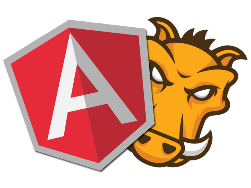https://assist-software.net/Angular%20Image