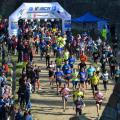 ASSIST Software running for life at Suceava Marathon