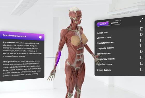 VR lesson simulation - VR Study Platform
