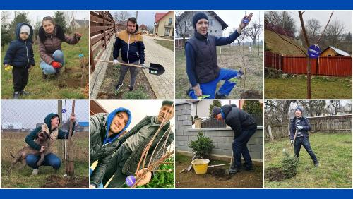 Tree Planting Challenge organized by ASSIST Software - promoted picture